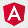_angular js